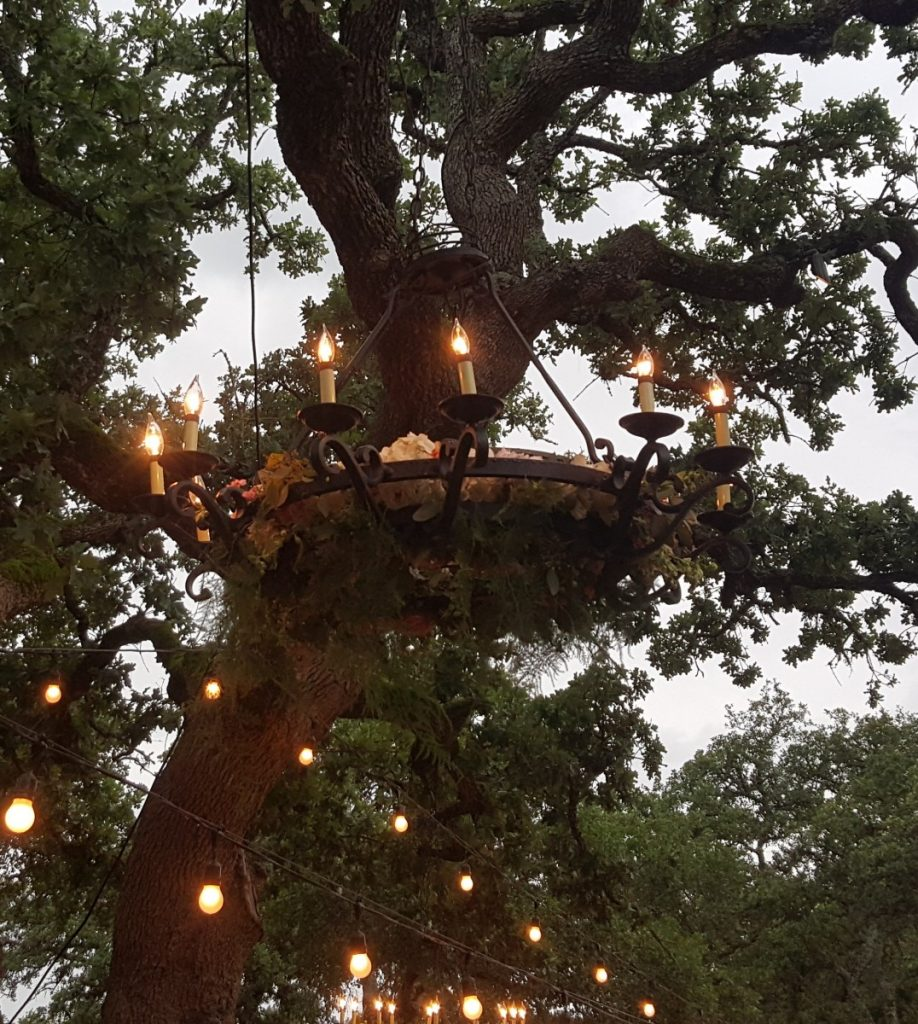 Wrought Iron Chandelier Hung in Trees with Flower Accents