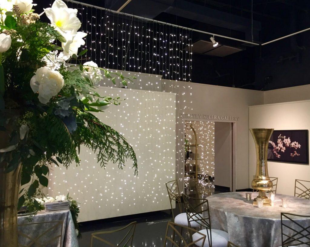 Twinkle Lights Curtain