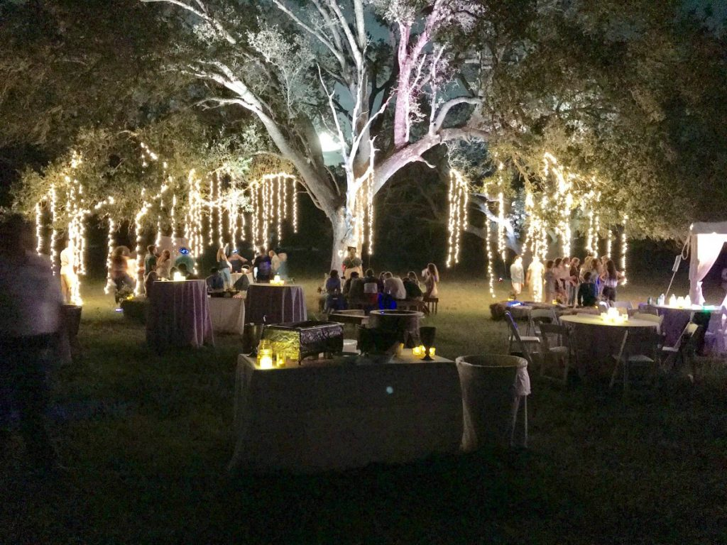 """""""Weeping Willow"""" Style Hanging Lighting"""